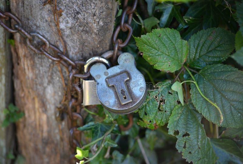 Старый сельский padlock стоковые изображения