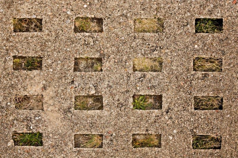 Старый сляб конкретной дороги стоковое фото