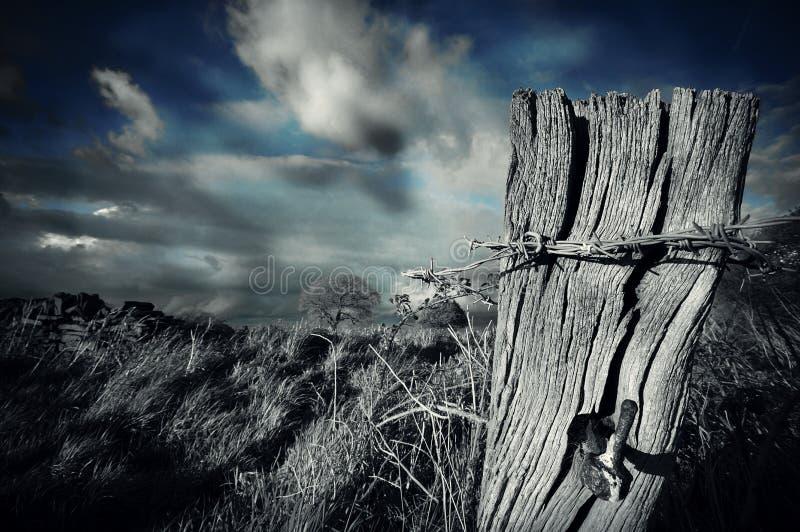 Старый столб стоковое изображение