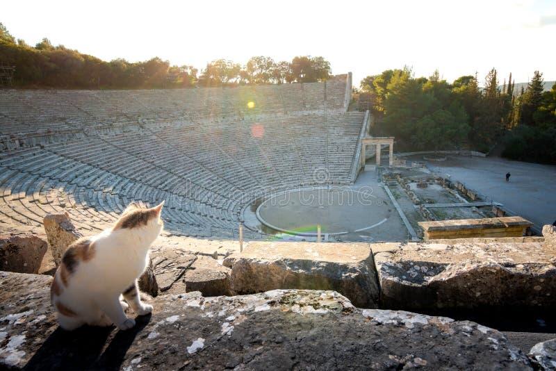Старый театр Epidaurus или ` Epidavros `, префектуры Argolida, Пелопоннеса стоковая фотография