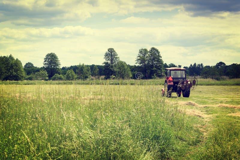 Старый трактор на зеленом поле стоковое фото rf