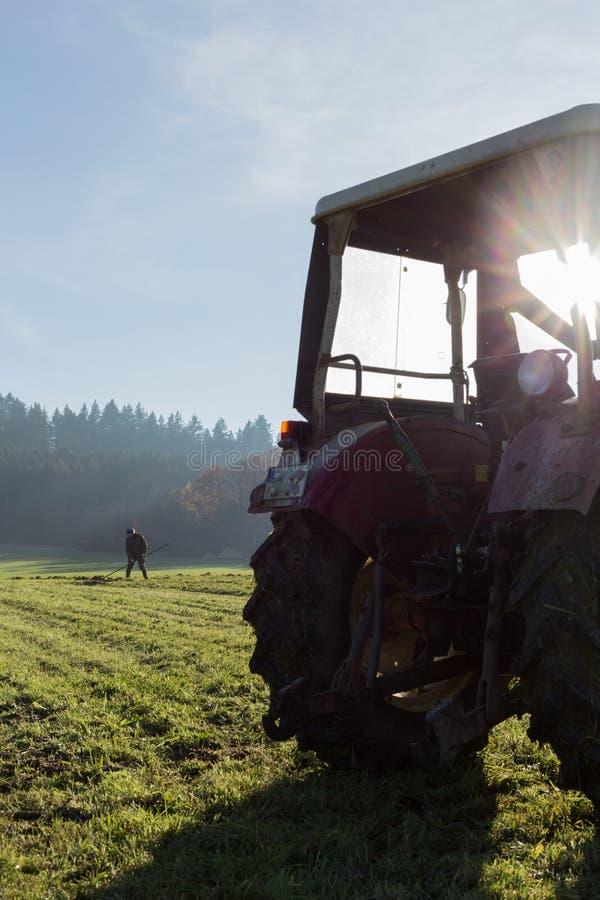 старый фермер сгребая траву стоковые изображения