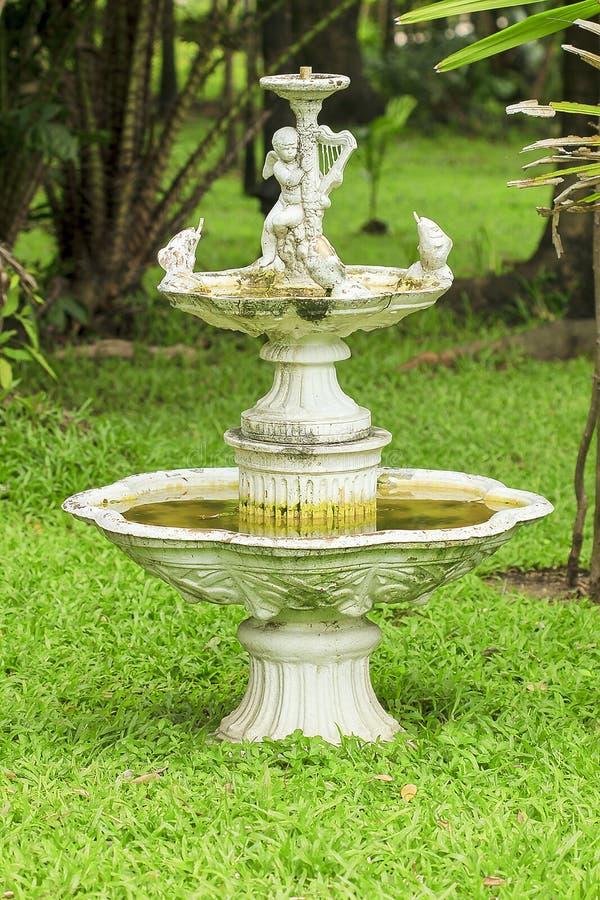 Старый фонтан купидонов в парке стоковые фотографии rf