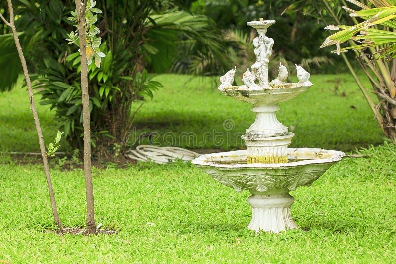 Старый фонтан купидонов в парке стоковая фотография rf