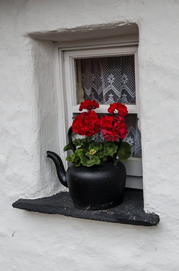 Старый чайник на windowsill коттеджа стоковое изображение rf