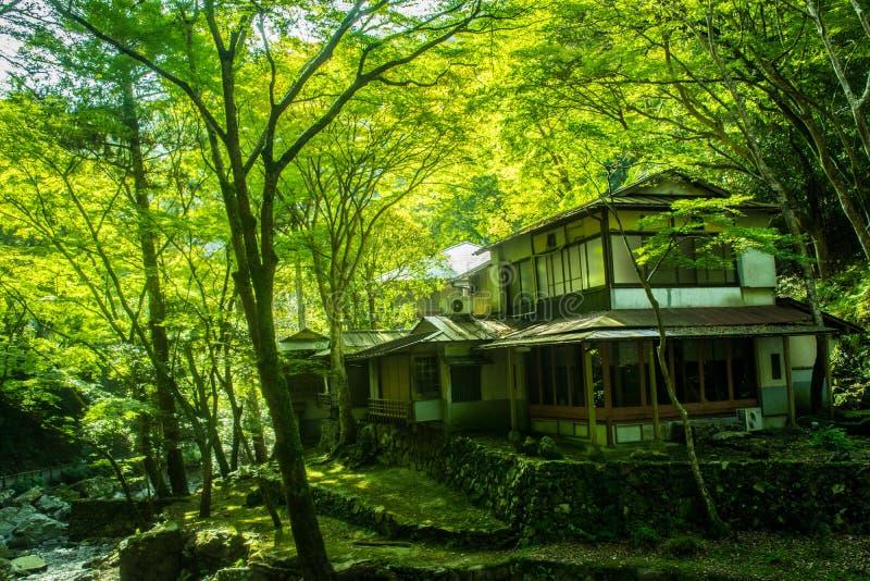 Старый японский дом в лесе стоковое фото rf