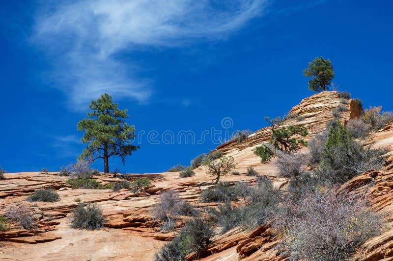 Download Старый Escarpment в Сионе стоковое изображение. изображение насчитывающей течь - 81800495