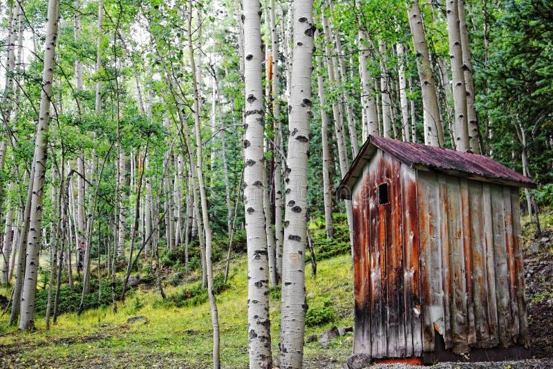 Старый Outhouse в пуще Aspen стоковые фотографии rf