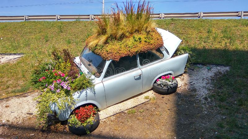 Старый Trabant припаркованный автомобиль засадил много красочных цветко стоковые изображения