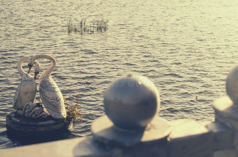 Download Статуя белых лебедей стоковое изображение. изображение насчитывающей пары - 81800143