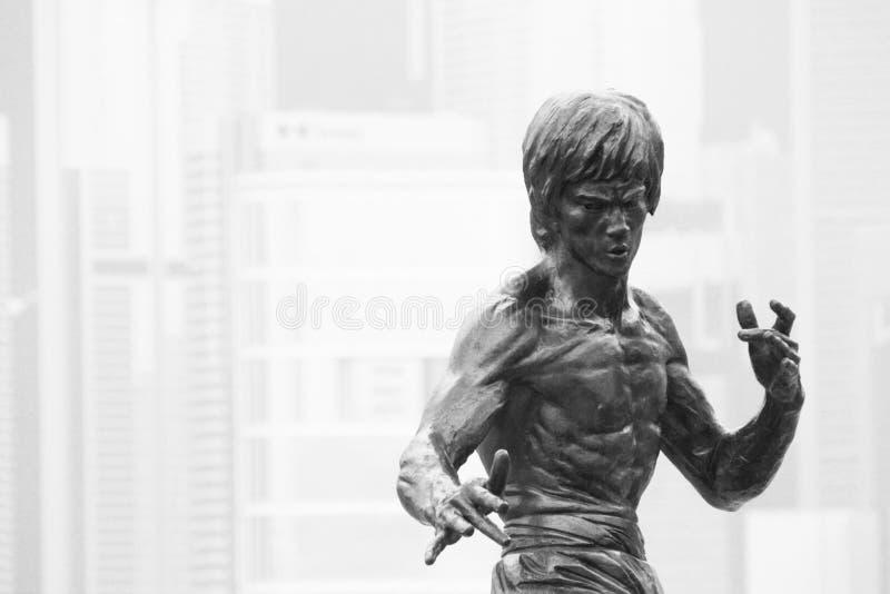 Статуя Брюс Ли стоковая фотография rf