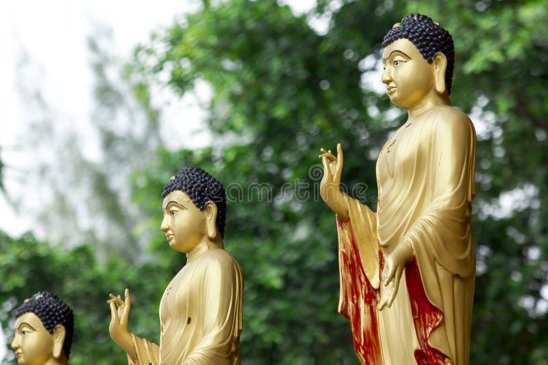 Статуя Будды в золотом положении стоя стоковые изображения rf