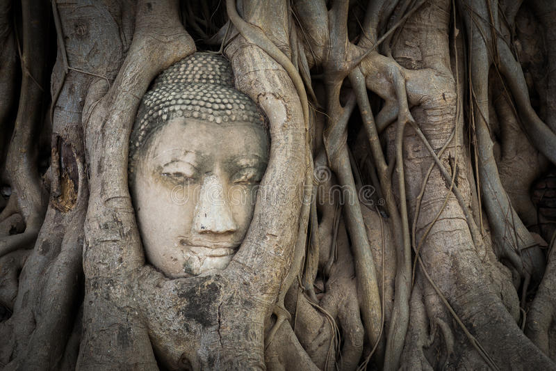 Статуя Будды и старые руины стоковое фото