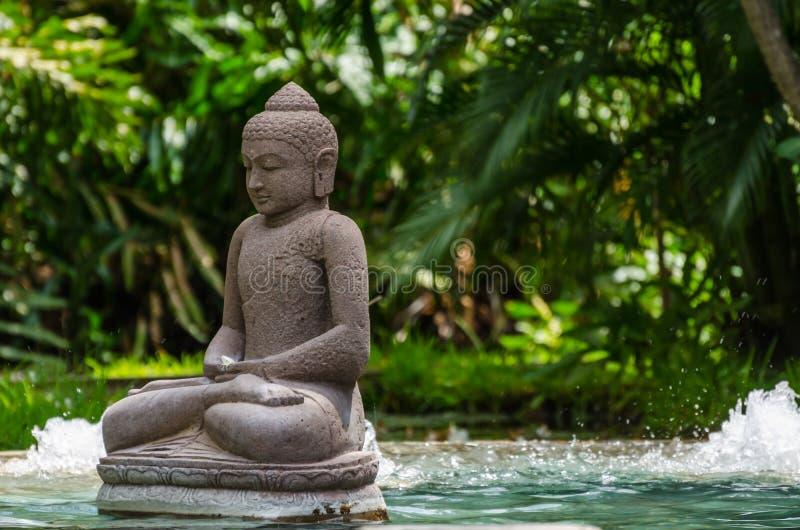 статуя Будды на бассейне стоковая фотография rf