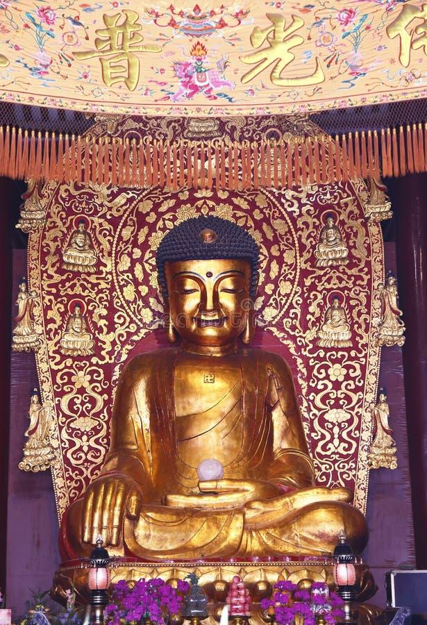 статуя Будды, статуя Sakyamuni стоковые изображения rf