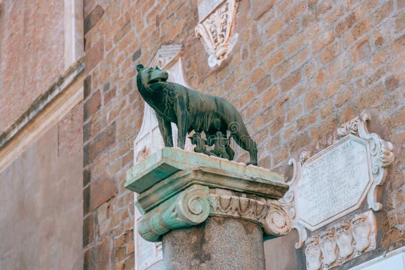 Статуя волка Capitoline подавая Romulus и Remus в Риме, Ita стоковые изображения