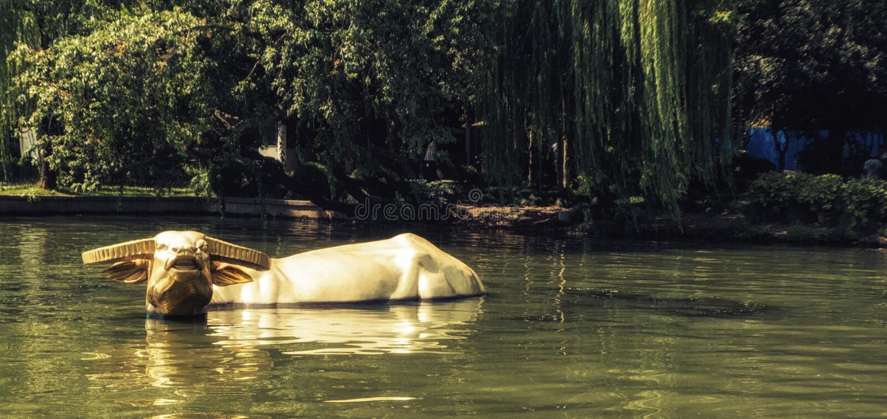 Статуя индийского буйвола в западном озере, Ханчжоу Китае стоковая фотография