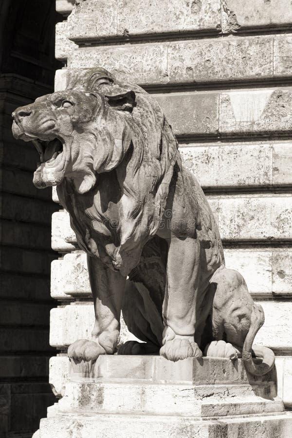 Статуя льва, budapest стоковое фото