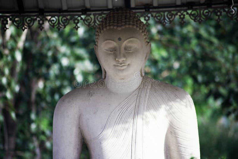 Статуя нагрузки Будды стоковые изображения rf