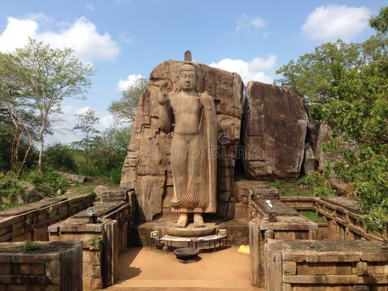 Статуя Aukana Будды стоковые изображения