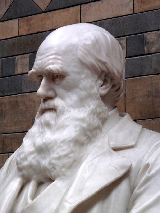 статуя charles darwin1809 стоковая фотография