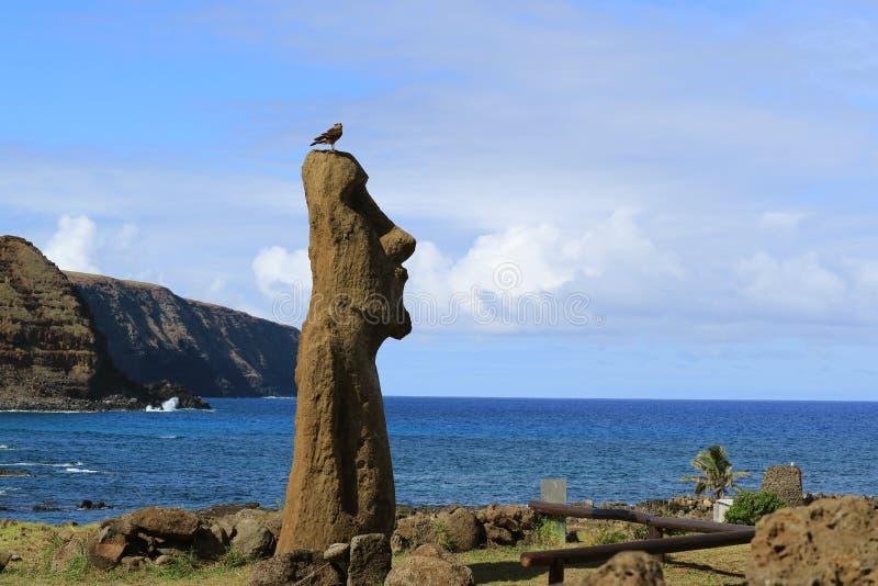 Статуя Moai на археологических раскопках Ahu Tongariki при птица садясь на насест на голове, Тихий океан кондора, остров пасхи, Ч стоковое изображение