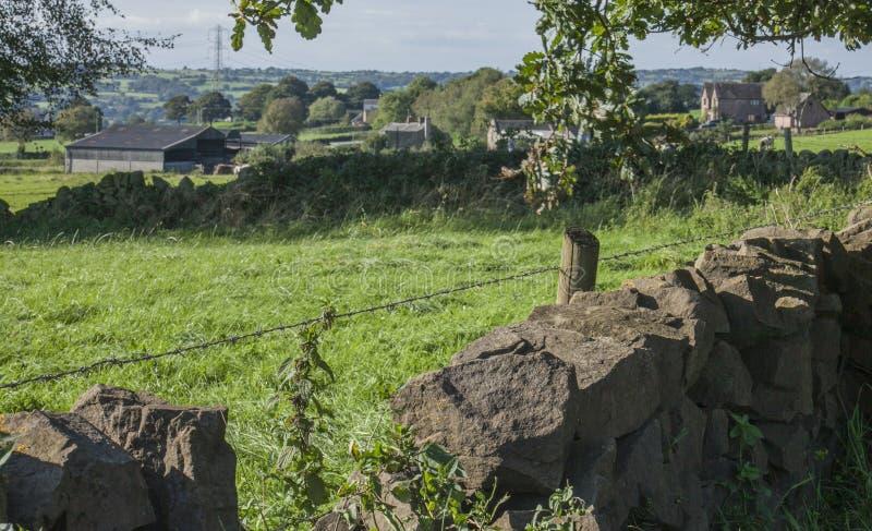 Стаффордшир; Великобританская сельская местность на солнечный день; луга и поля стоковое изображение rf