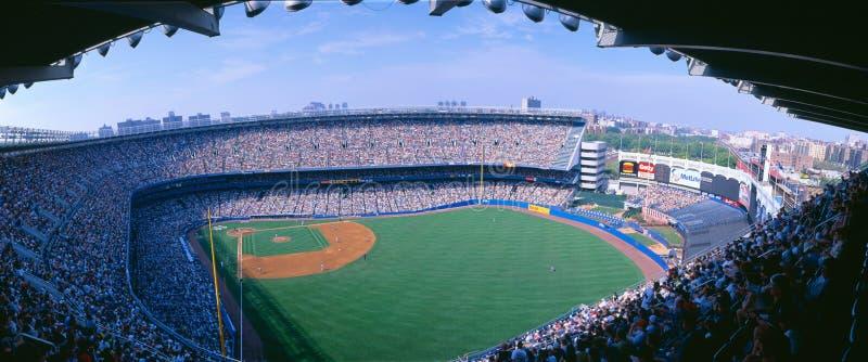 Стадион янки, янки NY v Tampa Bay, Нью-Йорк стоковое изображение rf