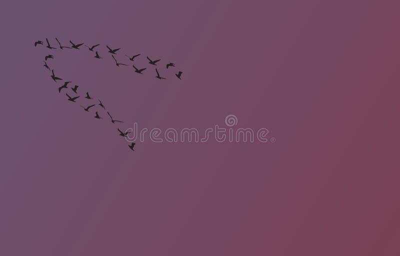 Стадо птиц на заходе солнца иллюстрация штока