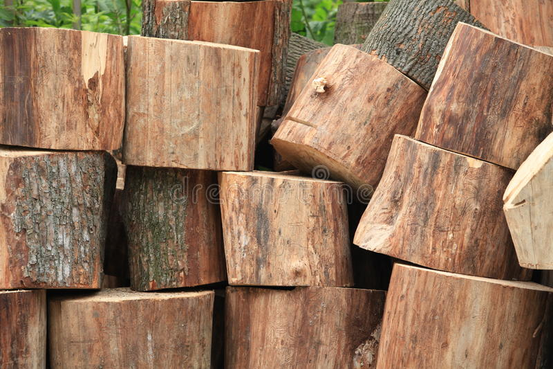 Ствол дерева спилил в части швырок стоковое изображение