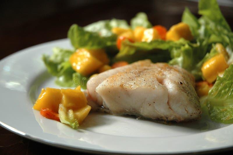Стейк рыб с зрелым салатом манго стоковое фото