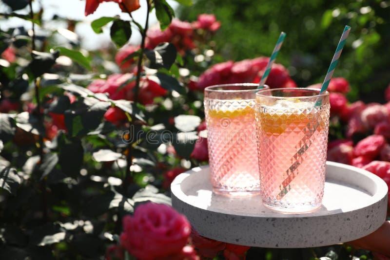 Стекла розового лимонада на белой таблице в розарии Космос для стоковые изображения rf