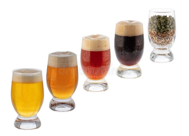 Стекла с пивом, солодом и хмелем стоковые фото