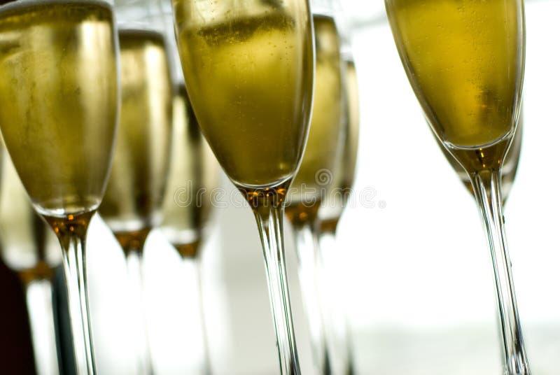 стекла шампанского стоковое изображение rf