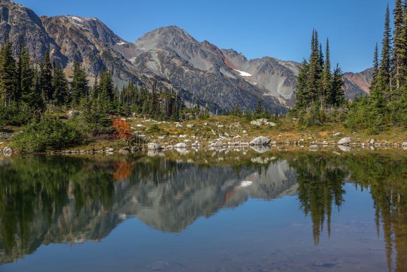Стекловидные отражения Таз под ясными голубыми небесами, Канада озер семафор стоковые фотографии rf