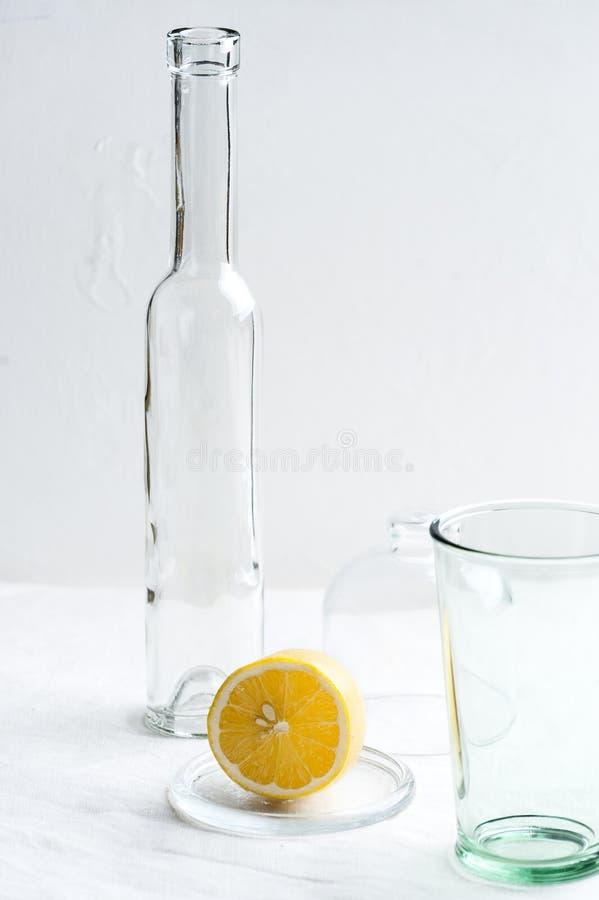 Стеклоизделие и половина лимона красный цвет редиски фото еды шара схематический стоковые изображения rf