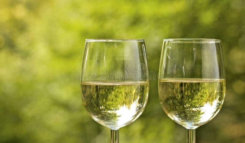Стекло вина на пикнике. стоковые изображения rf