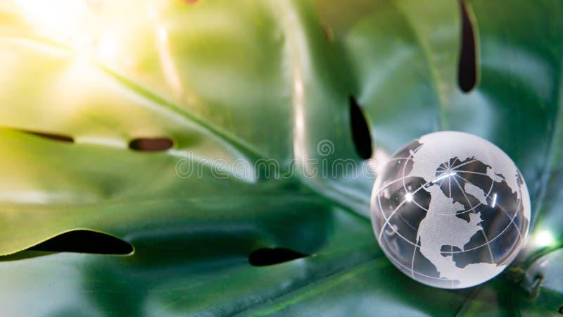 Стекло глобуса мира кристаллическое на зеленых лист стоковое фото