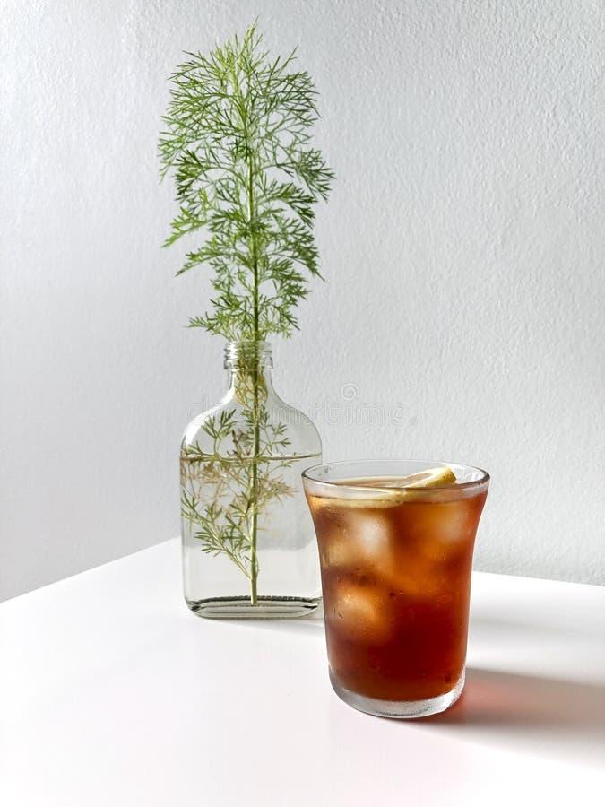 Стекло домашнего сделанного кофе льда С свежестью кориандра в бутылке стоковое изображение