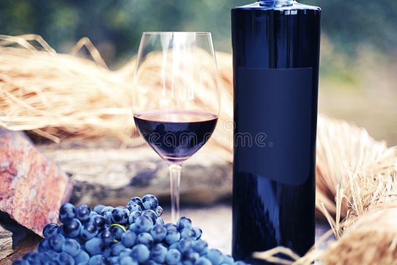 Стекло красного вина с бутылкой на предпосылке виноградника стоковая фотография