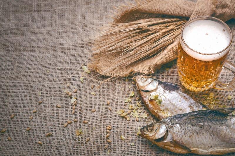 Стекло пенистого светлого пива Спирт в кружке стоковая фотография