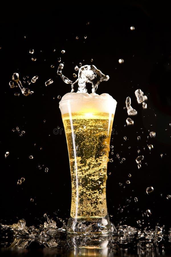 стекло пива брызгает воду стоковые изображения rf