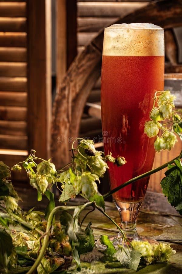 Стекло пива в стиле страны стоковые изображения