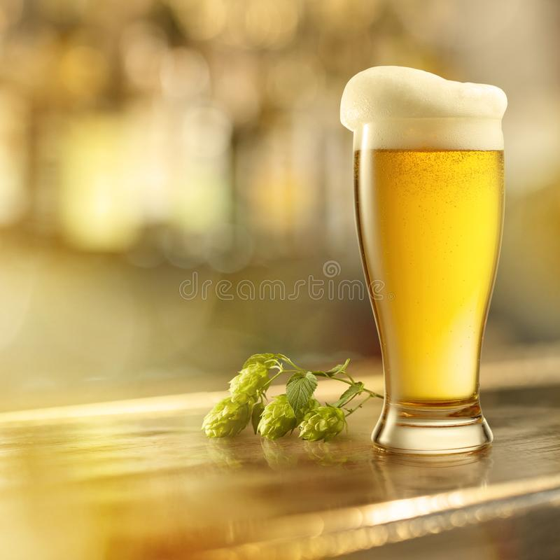 Стекло пива с пеной на баре стоковое фото