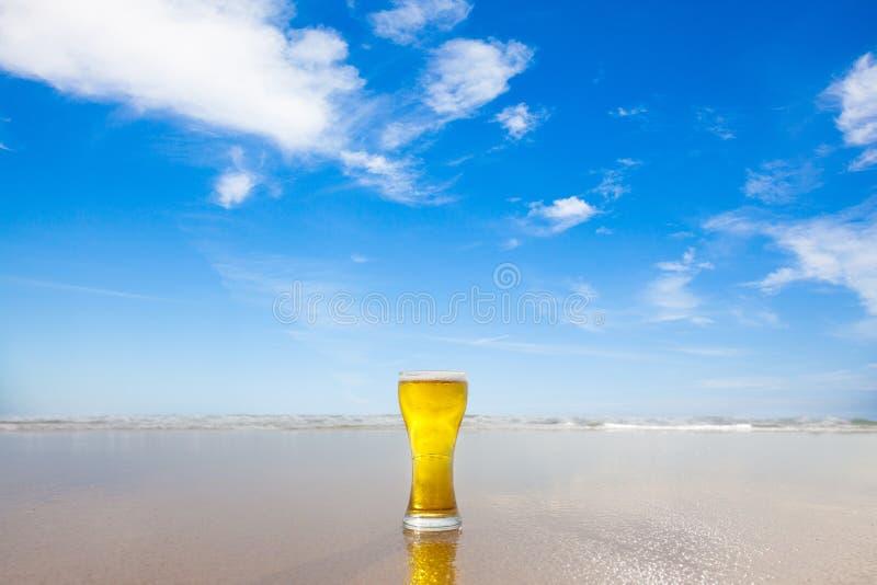 стекло пива стоковое изображение rf