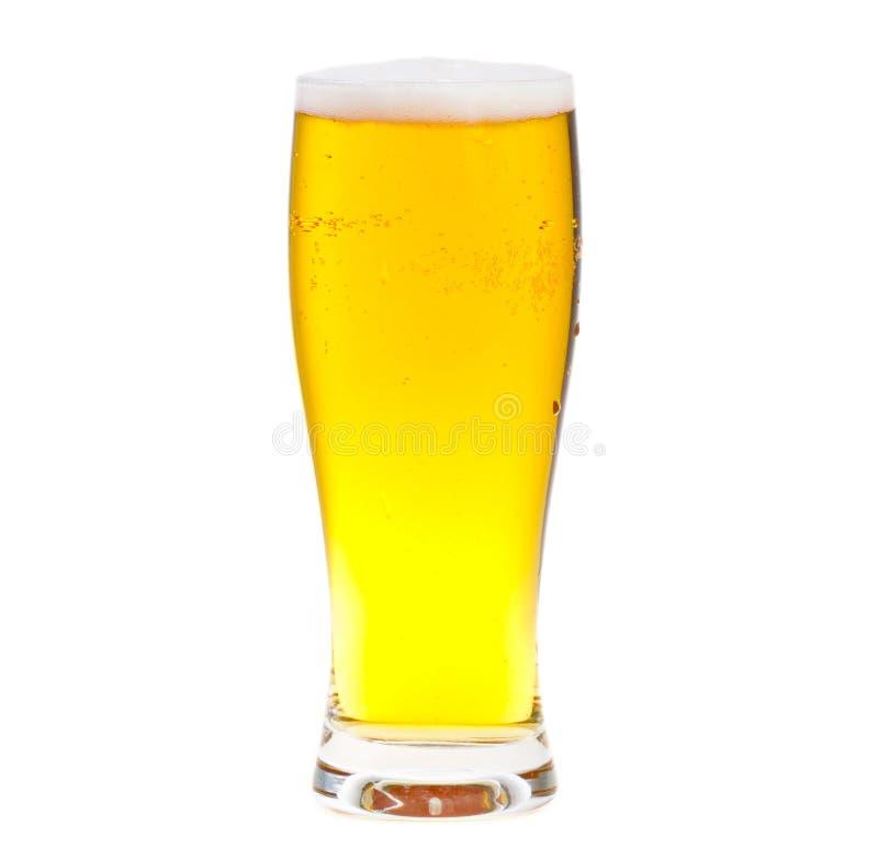 стекло пива стоковые фотографии rf