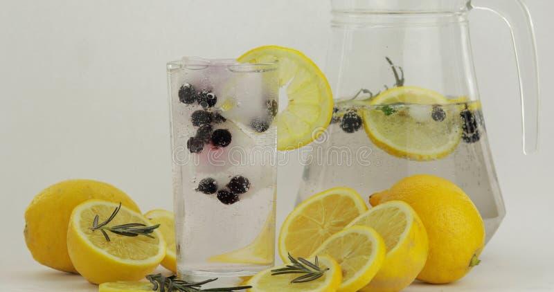Стекло с холодным напитком Лимон, кубы льда и черная смородина в стекле напитка стоковые изображения rf