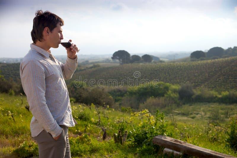 стеклянное вино человека стоковое изображение