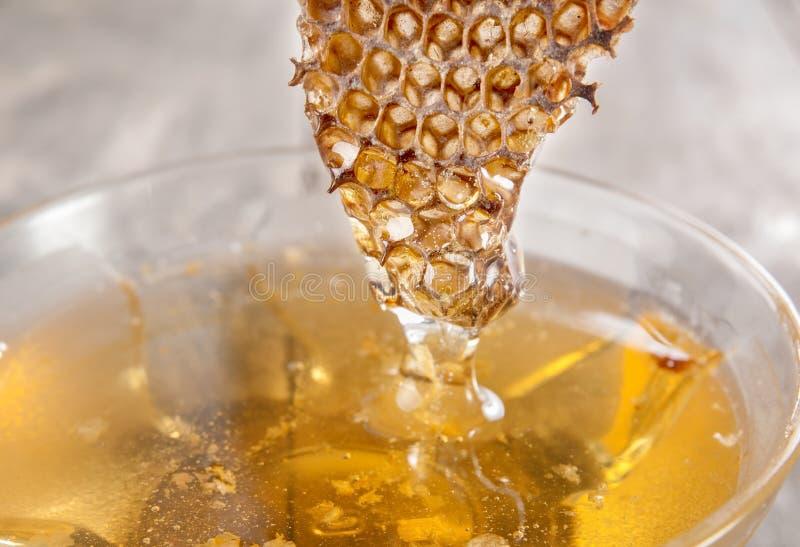 Стеклянные бак меда и гребень меда стоковое фото rf