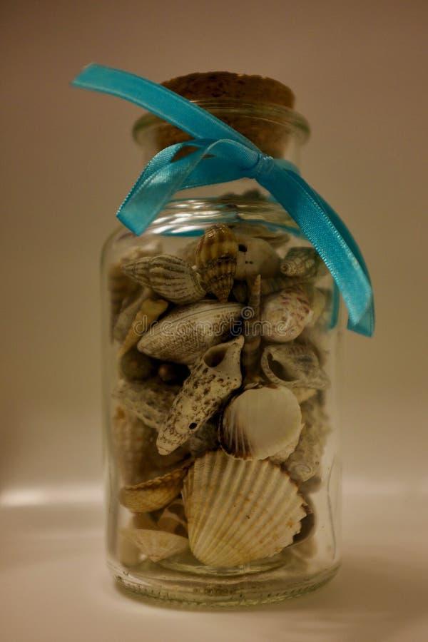 стеклянные seashells опарника стоковые фото